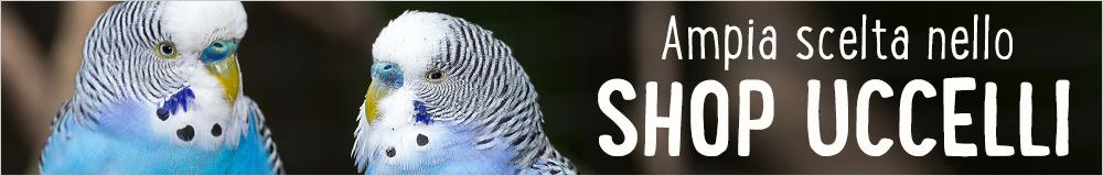 Shop uccelli