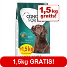 12 kg + 1,5 kg - Concept for Life Dog Overfill