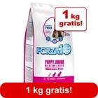 11,5 kg + 1 kg gratis! 12,5 kg Forza10 Maintenance