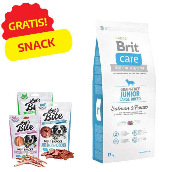 Brit Care Junior Large Grain Free Salmone e Patate