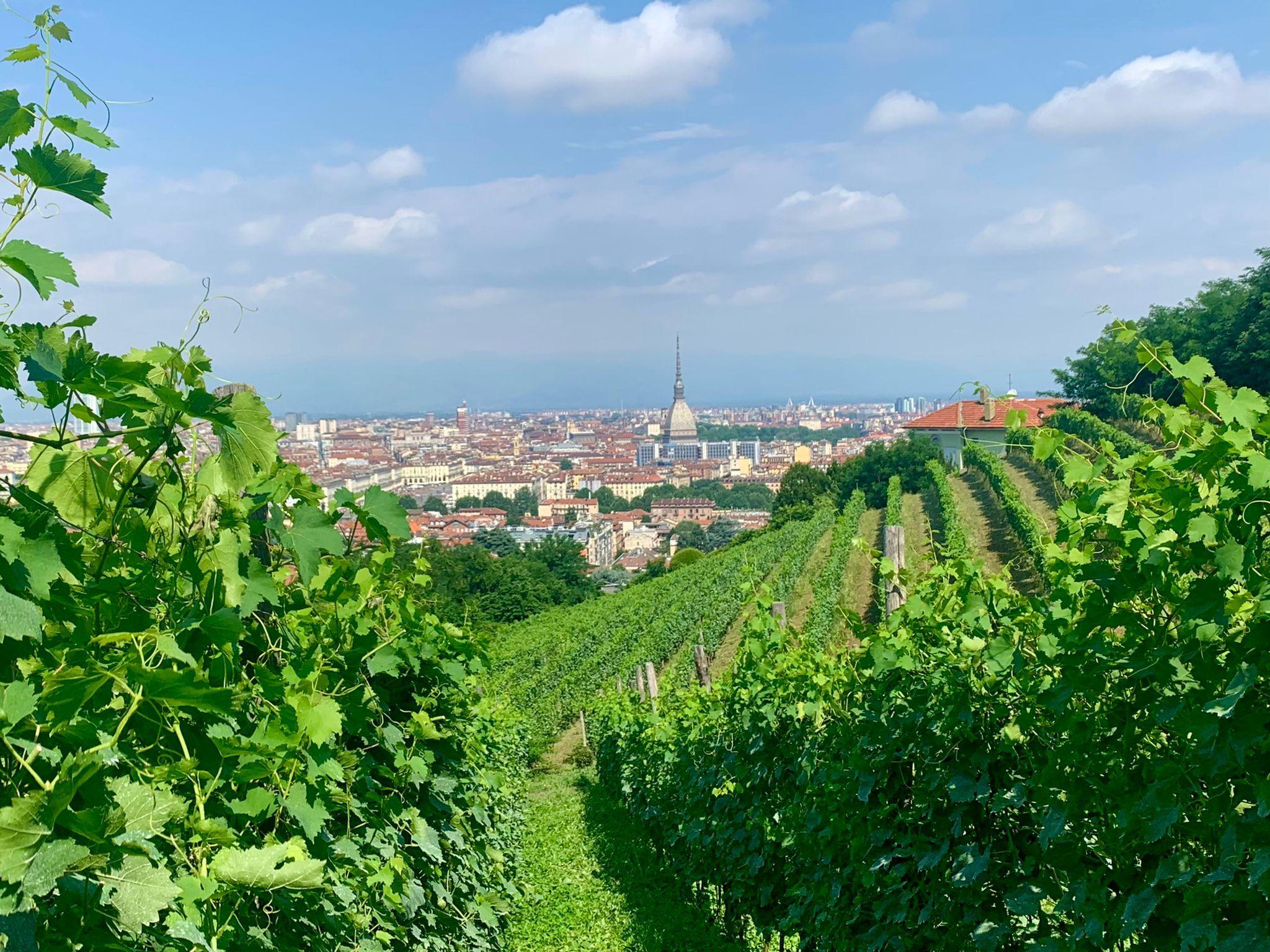 48 ore a Torino: l'itinerario perfetto