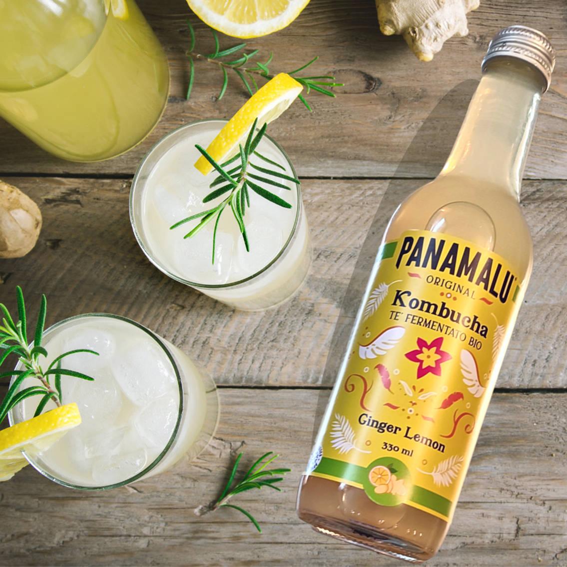 Panamalu, Original Kombucha